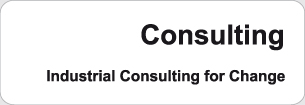 Festo Consulting - Industrial Consulting for Change